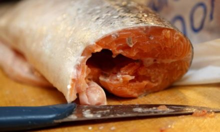 Como usar o microondas para ter máximo de benefício – Cozinhar Peixes