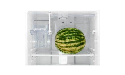Como limpar geladeira Electrolux – DF51