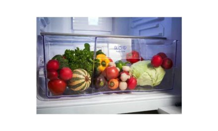 Como limpar geladeira Panasonic 435L – NR-BT50